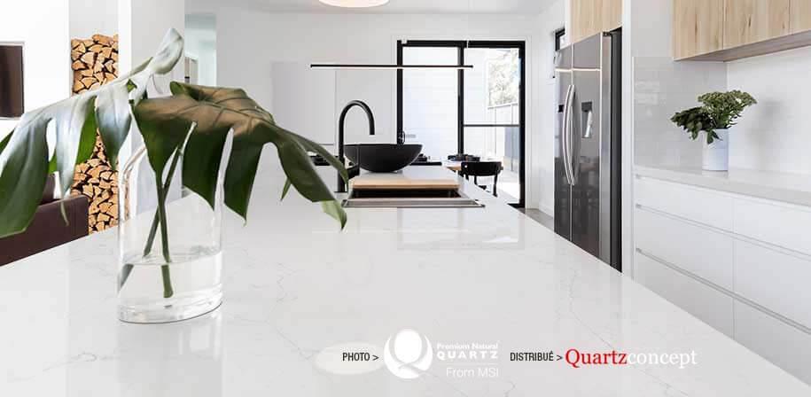 Calacatta Botanica comptoir de Quartz MSI